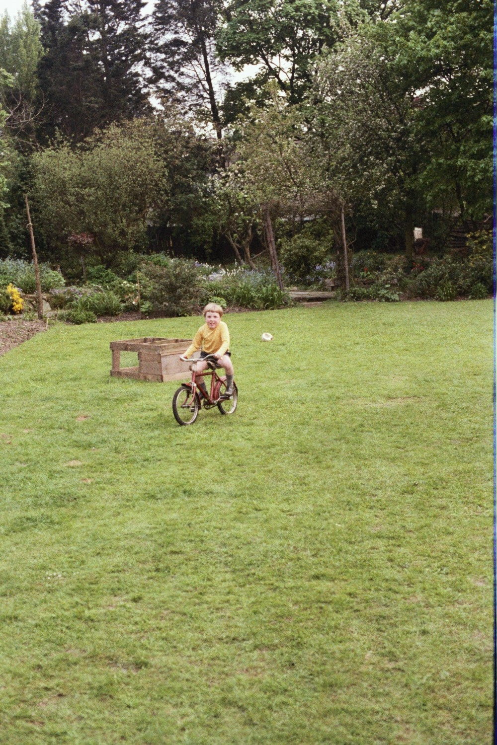 Matt learns to ride a Bicycle in the garden