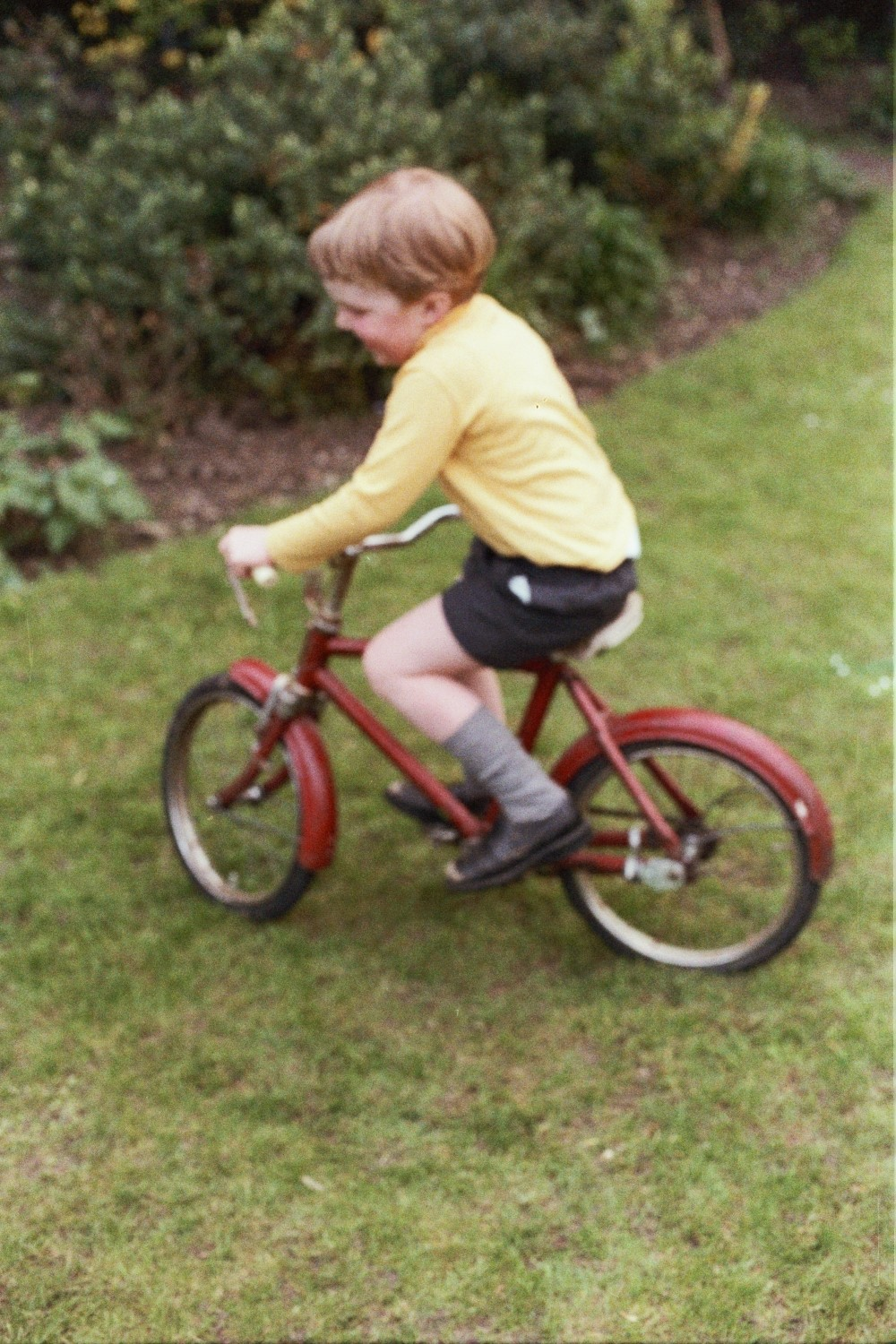 I Learn to Ride a Bicycle - the Family Bicycle - Woodford