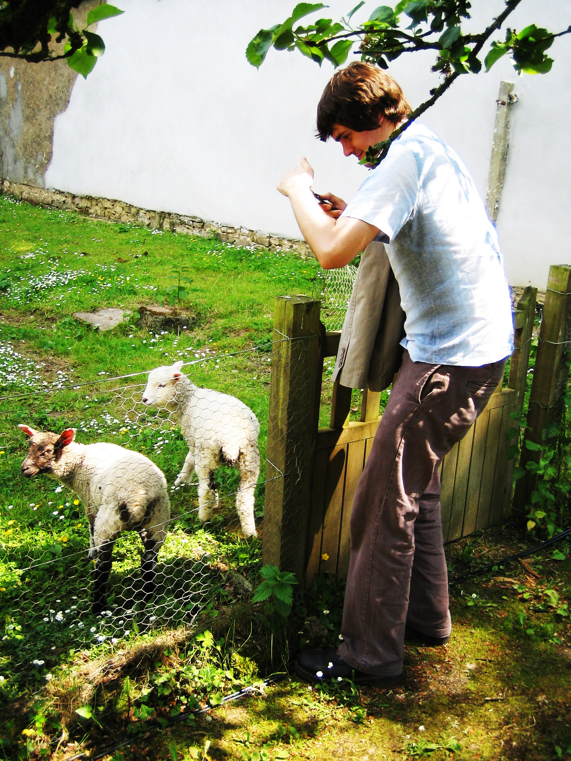 Alan helps out at Springwatch