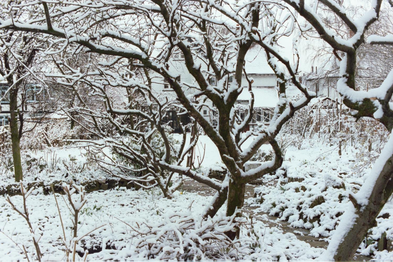 Snowy Woodford Green