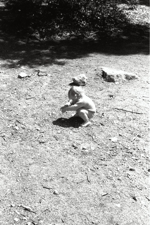 The Shearers in Yosemite, in the late 1970s. California USA