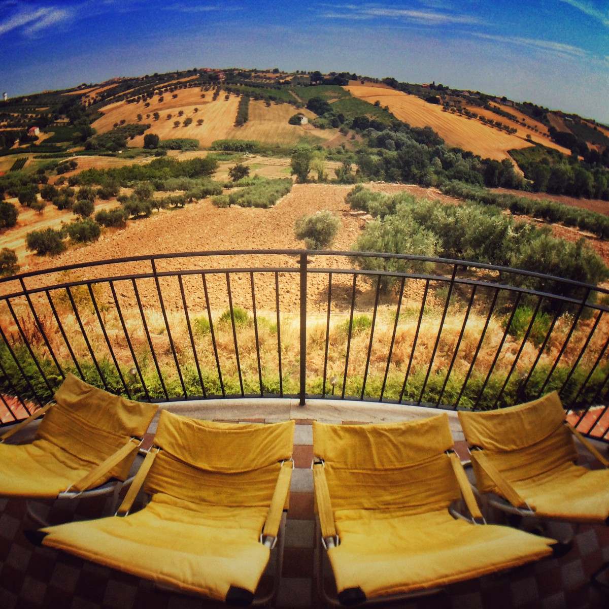 The Balcony - Wonderful views of Olive Groves