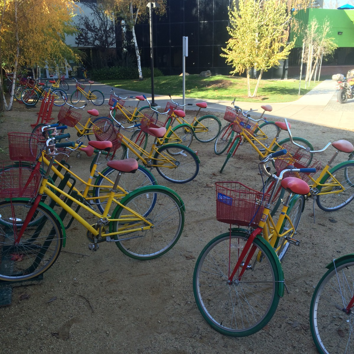 Shared bicycles at Google